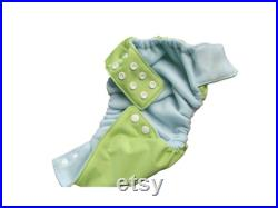 Youth Small Little Dippers Washable Swim Diaper-Frog Green Frog Green